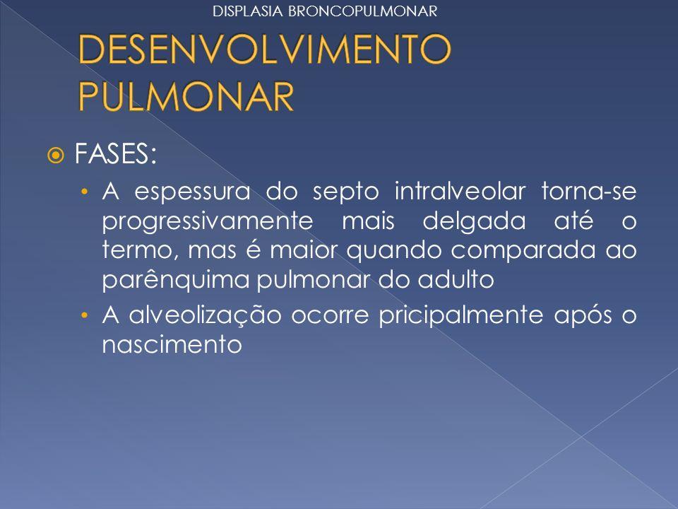 FASES: A espessura do septo intralveolar torna-se progressivamente mais delgada até o termo, mas é maior quando comparada ao parênquima pulmonar do adulto A alveolização ocorre pricipalmente após o nascimento DISPLASIA BRONCOPULMONAR