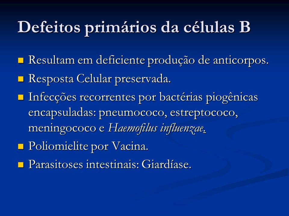 Defeitos primários da células B Resultam em deficiente produção de anticorpos. Resultam em deficiente produção de anticorpos. Resposta Celular preserv
