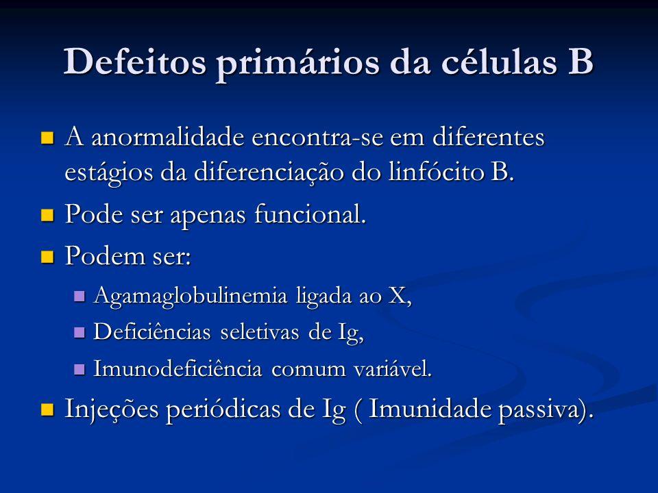 Defeitos primários da células B A anormalidade encontra-se em diferentes estágios da diferenciação do linfócito B. A anormalidade encontra-se em difer