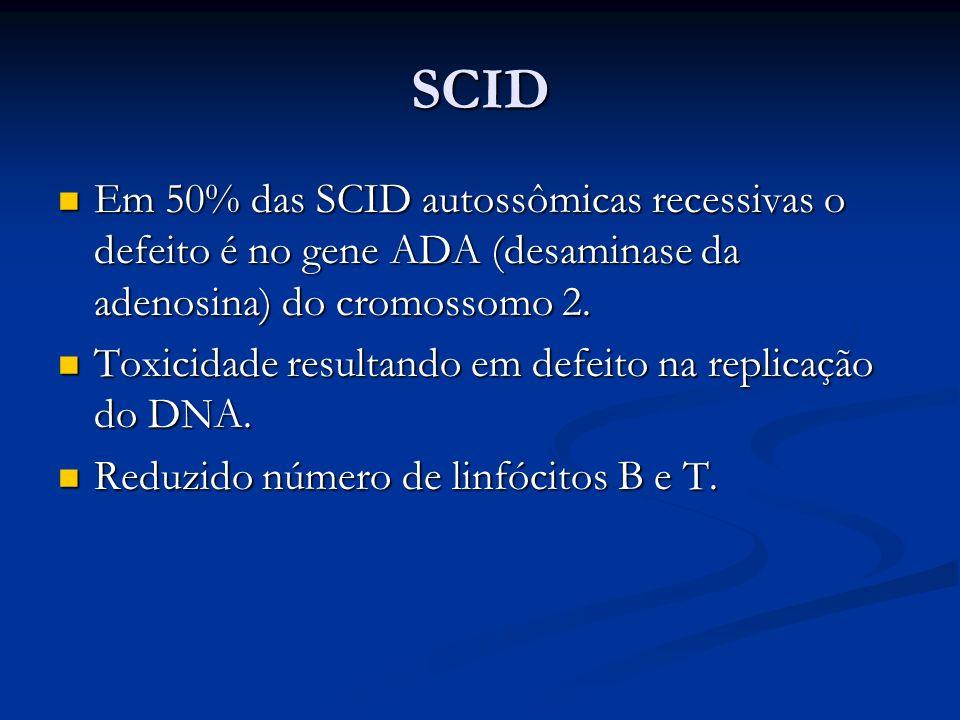 SCID Em 50% das SCID autossômicas recessivas o defeito é no gene ADA (desaminase da adenosina) do cromossomo 2. Em 50% das SCID autossômicas recessiva