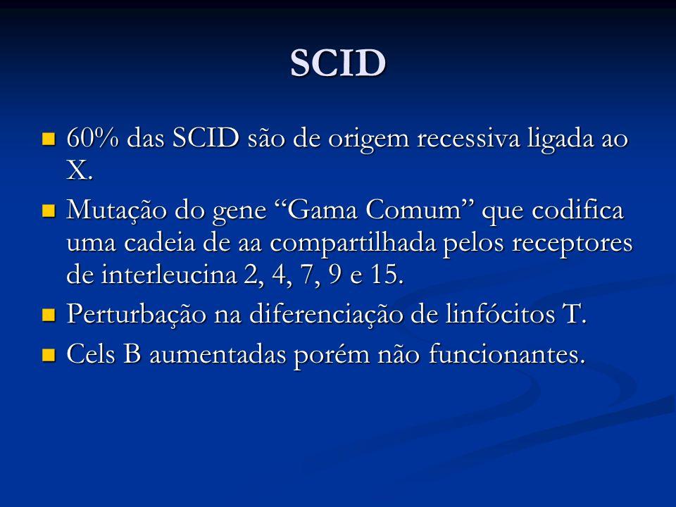 SCID 60% das SCID são de origem recessiva ligada ao X. 60% das SCID são de origem recessiva ligada ao X. Mutação do gene Gama Comum que codifica uma c
