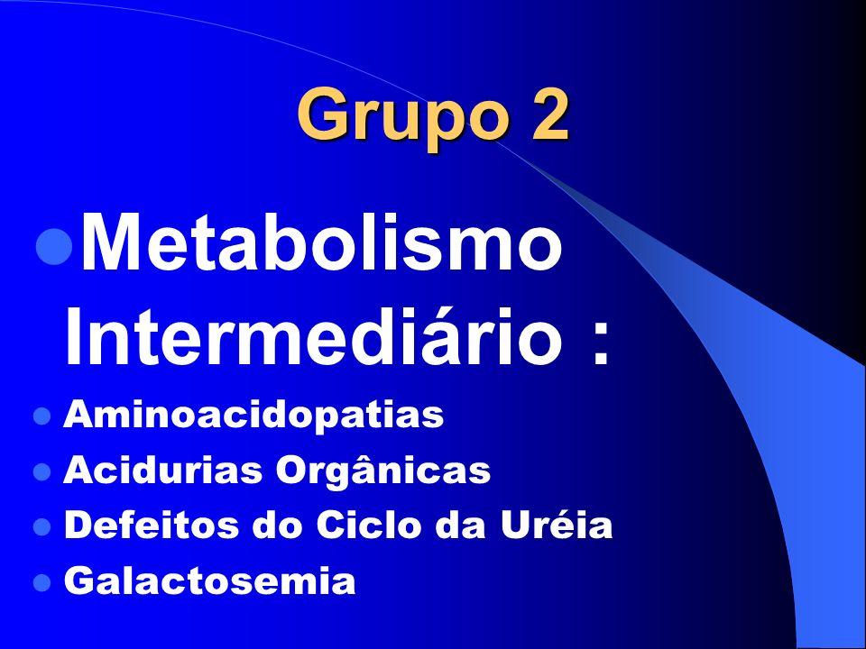 Grupo 2 Metabolismo Intermediário : Aminoacidopatias Acidurias Orgânicas Defeitos do Ciclo da Uréia Galactosemia