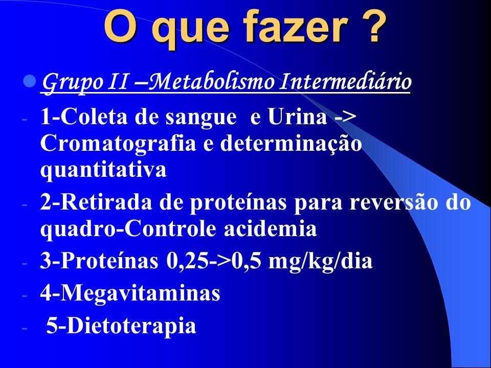 O que fazer ? Grupo II –Metabolismo Intermediário - 1-Coleta de sangue e Urina -> Cromatografia e determinação quantitativa - 2-Retirada de proteínas