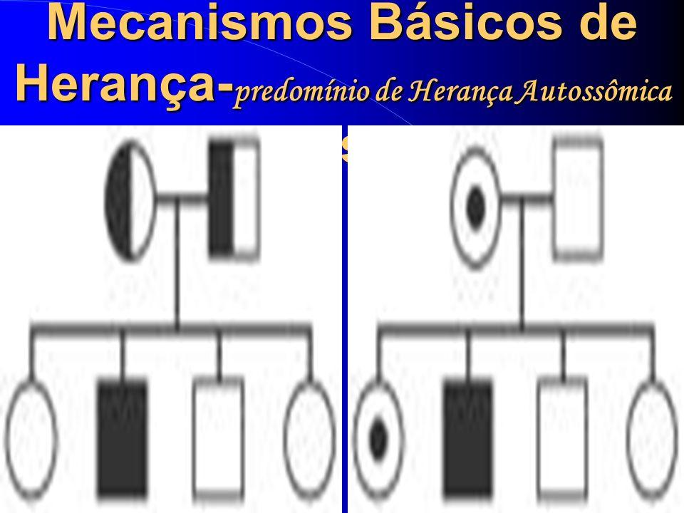 Mecanismos Básicos de Herança- predomínio de Herança Autossômica Recessiva