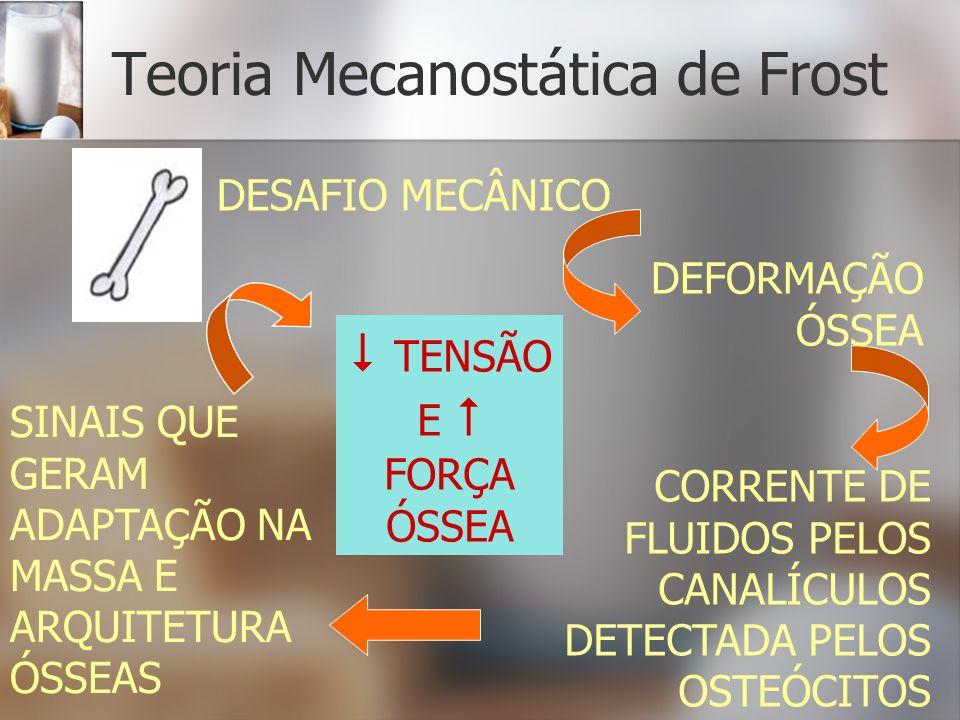 Teoria Mecanostática de Frost CORRENTE DE FLUIDOS PELOS CANALÍCULOS DETECTADA PELOS OSTEÓCITOS DESAFIO MECÂNICO DEFORMAÇÃO ÓSSEA SINAIS QUE GERAM ADAP