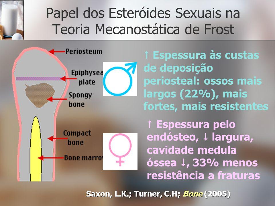 Papel dos Esteróides Sexuais na Teoria Mecanostática de Frost Saxon, L.K.; Turner, C.H; Bone (2005) Espessura às custas de deposição periosteal: ossos