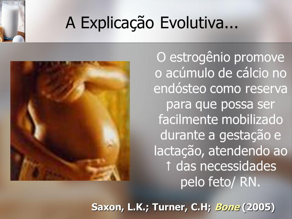 A Explicação Evolutiva... Saxon, L.K.; Turner, C.H; Bone (2005) O estrogênio promove o acúmulo de cálcio no endósteo como reserva para que possa ser f