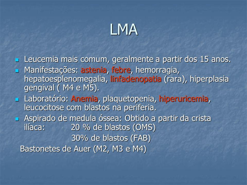 LMA Leucemia mais comum, geralmente a partir dos 15 anos. Leucemia mais comum, geralmente a partir dos 15 anos. Manifestações: astenia, febre, hemorra