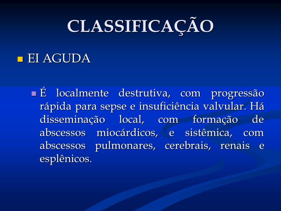 CLASSIFICAÇÃO EI AGUDA EI AGUDA É localmente destrutiva, com progressão rápida para sepse e insuficiência valvular. Há disseminação local, com formaçã