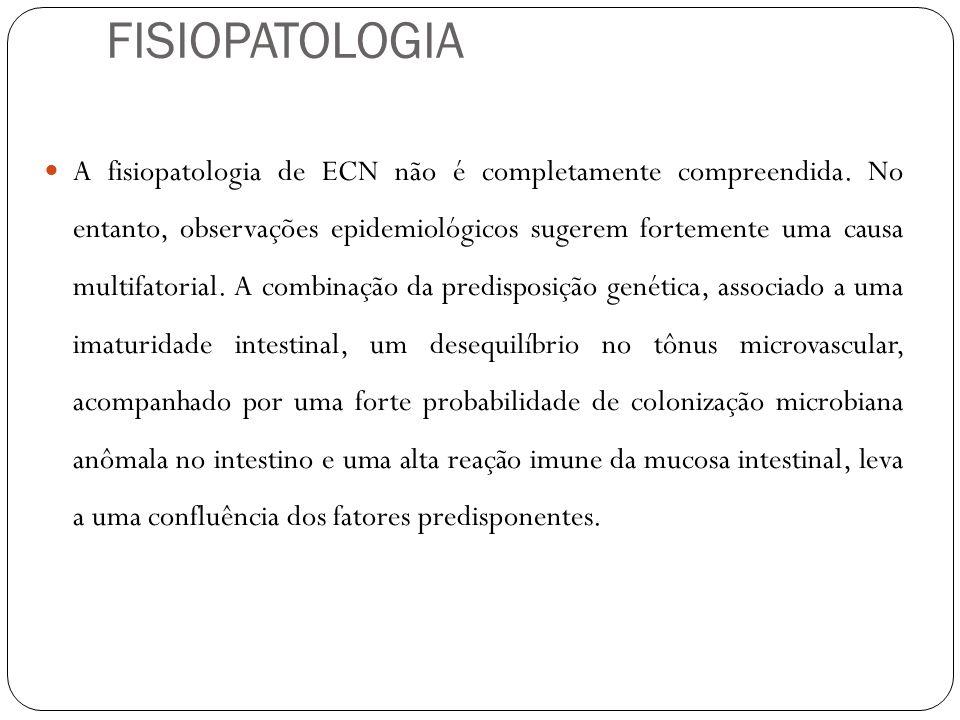 FISIOPATOLOGIA A fisiopatologia de ECN não é completamente compreendida. No entanto, observações epidemiológicos sugerem fortemente uma causa multifat