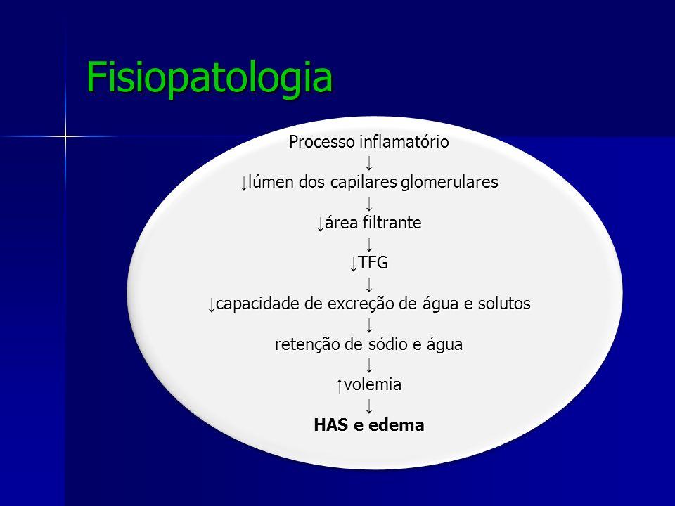 Fisiopatologia Processo inflamatório lúmen dos capilares glomerulares lúmen dos capilares glomerulares área filtrante área filtrante TFG TFG capacidad