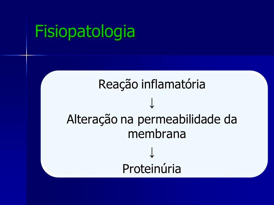 Fisiopatologia Reação inflamatória Alteração na permeabilidade da membrana Proteinúria