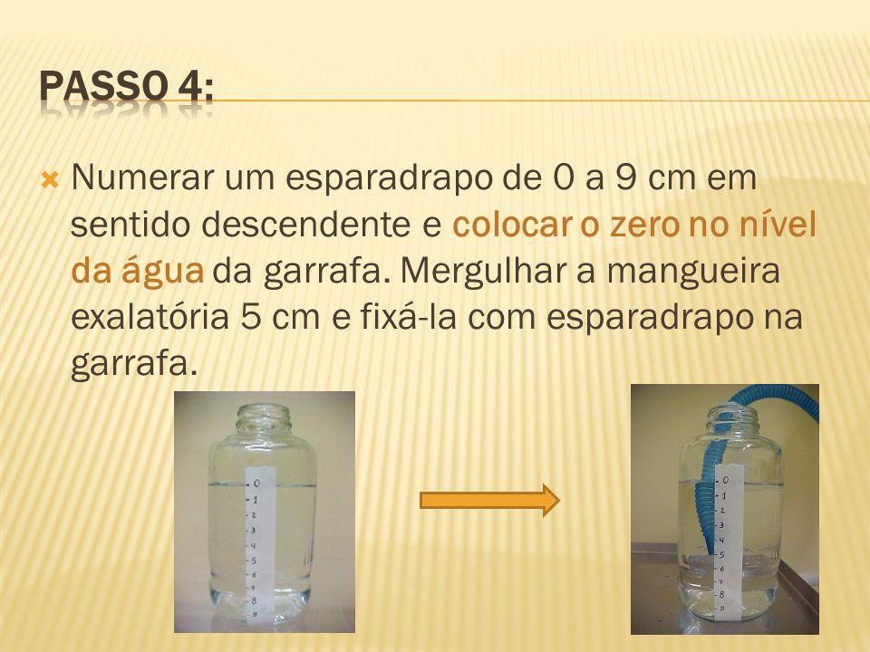 Numerar um esparadrapo de 0 a 9 cm em sentido descendente e colocar o zero no nível da água da garrafa. Mergulhar a mangueira exalatória 5 cm e fixá-l