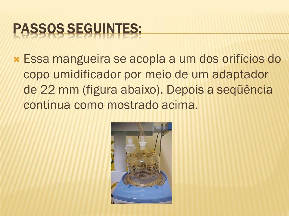 Essa mangueira se acopla a um dos orifícios do copo umidificador por meio de um adaptador de 22 mm (figura abaixo). Depois a seqüência continua como m