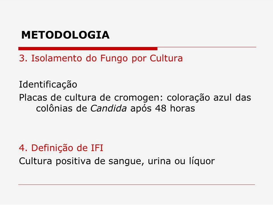 METODOLOGIA 3.