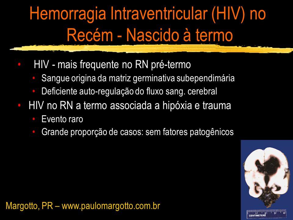 Hemorragia Intraventricular no Recém - Nascido à termo Origem do Sangramento Hemorragia talâmica (presente em 12 de 19 RN) HIV - secundária a proximidade de canais venosos com a parede ventricular Matriz germinativa residual (eminência ganglionar entre a cabeça do núcleo caudado e o tálamo anterior) Plexo Coróide Roland e cl (1990); Bergman e cl (1995) Margotto, PR – www.paulomargotto.com.br