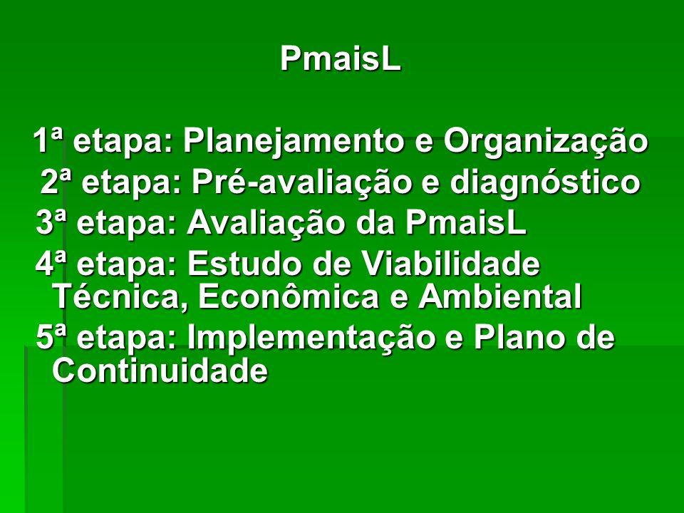 PmaisL 1ª etapa: Planejamento e Organização 2ª etapa: Pré-avaliação e diagnóstico 3ª etapa: Avaliação da PmaisL 3ª etapa: Avaliação da PmaisL 4ª etapa