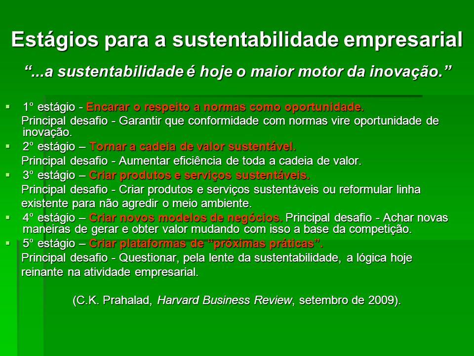 Estágios para a sustentabilidade empresarial...a sustentabilidade é hoje o maior motor da inovação. 1° estágio - Encarar o respeito a normas como opor