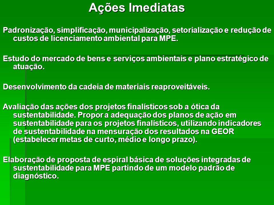 Ações Imediatas Padronização, simplificação, municipalização, setorialização e redução de custos de licenciamento ambiental para MPE. Estudo do mercad