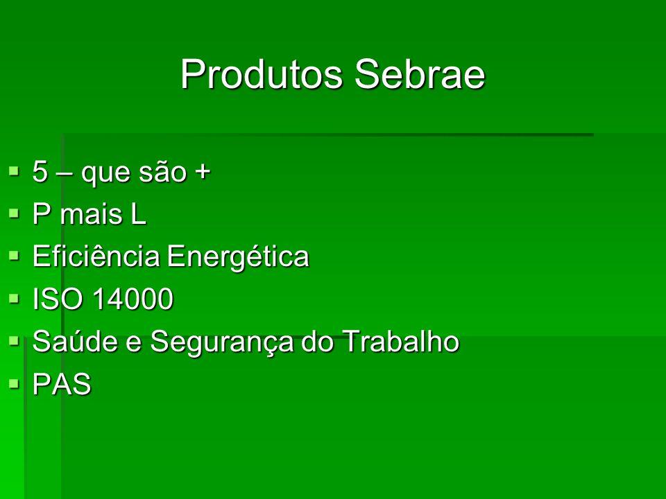 Produtos Sebrae 5 – que são + 5 – que são + P mais L P mais L Eficiência Energética Eficiência Energética ISO 14000 ISO 14000 Saúde e Segurança do Tra