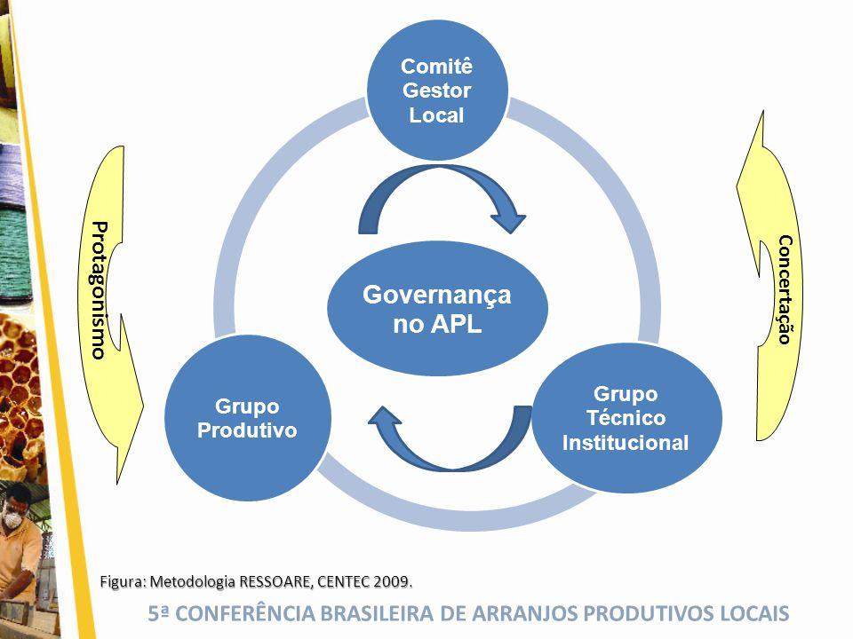 5ª CONFERÊNCIA BRASILEIRA DE ARRANJOS PRODUTIVOS LOCAIS Governança no APL Comitê Gestor Local Grupo Técnico Institucional Grupo Produtivo Figura: Meto
