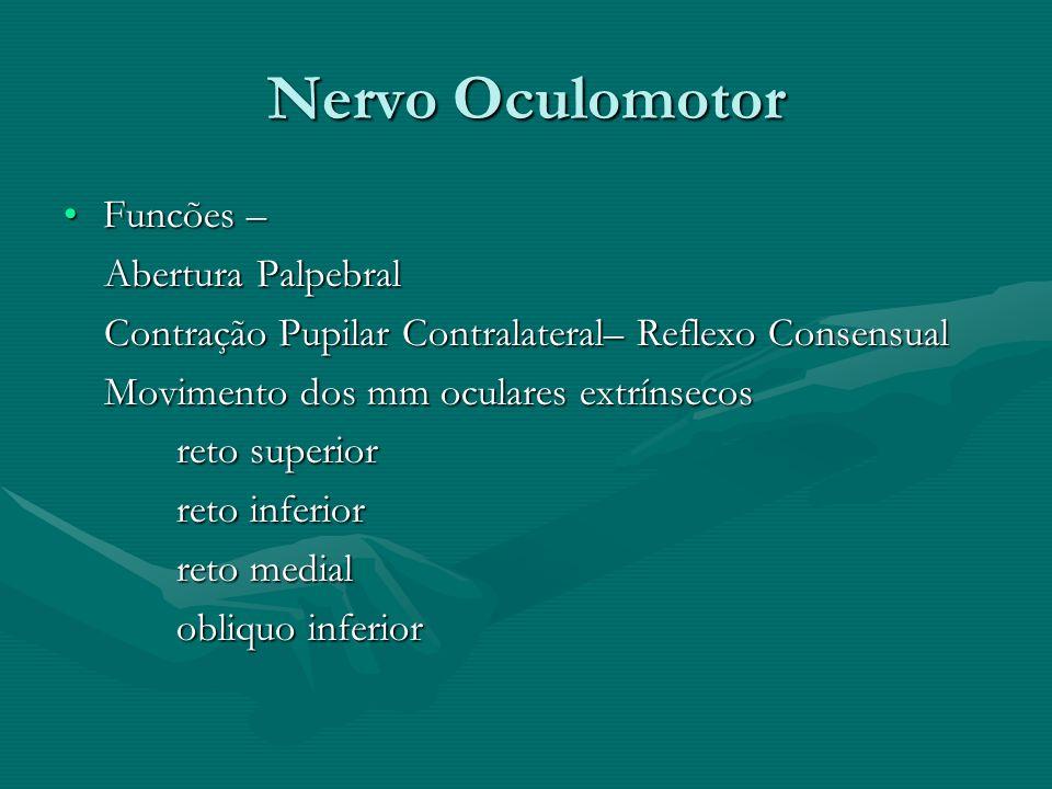 Nervo Oculomotor Funcões –Funcões – Abertura Palpebral Abertura Palpebral Contração Pupilar Contralateral– Reflexo Consensual Contração Pupilar Contra