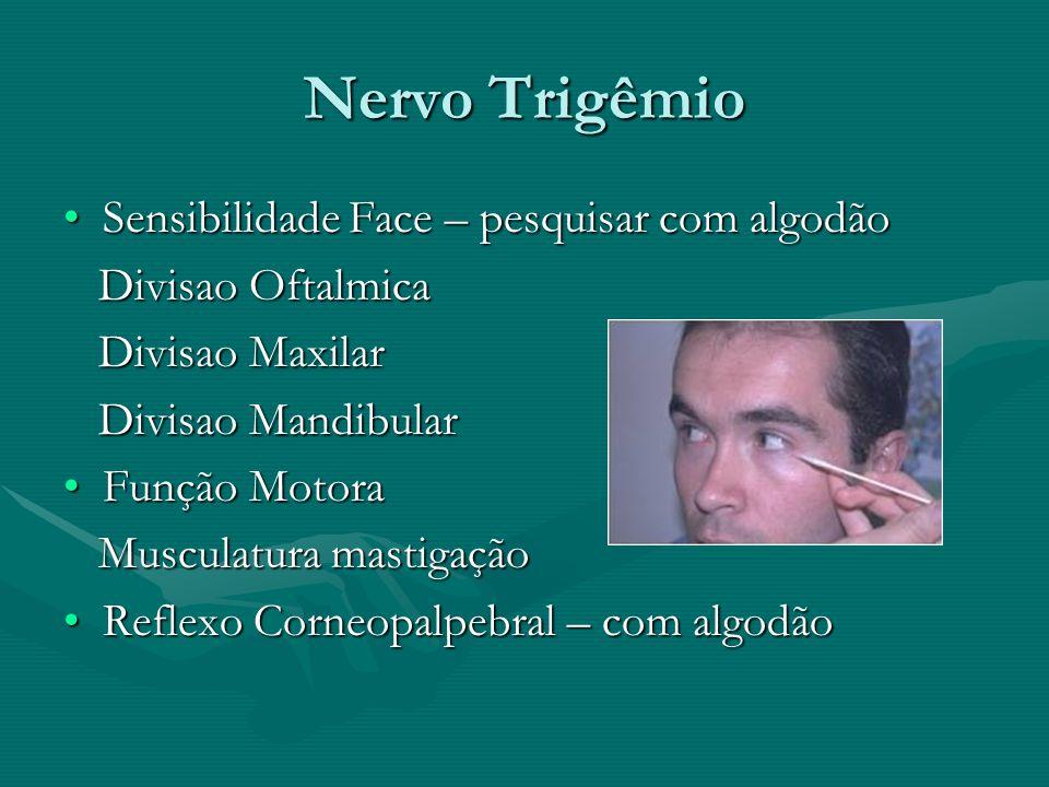 Nervo Trigêmio Sensibilidade Face – pesquisar com algodãoSensibilidade Face – pesquisar com algodão Divisao Oftalmica Divisao Oftalmica Divisao Maxila
