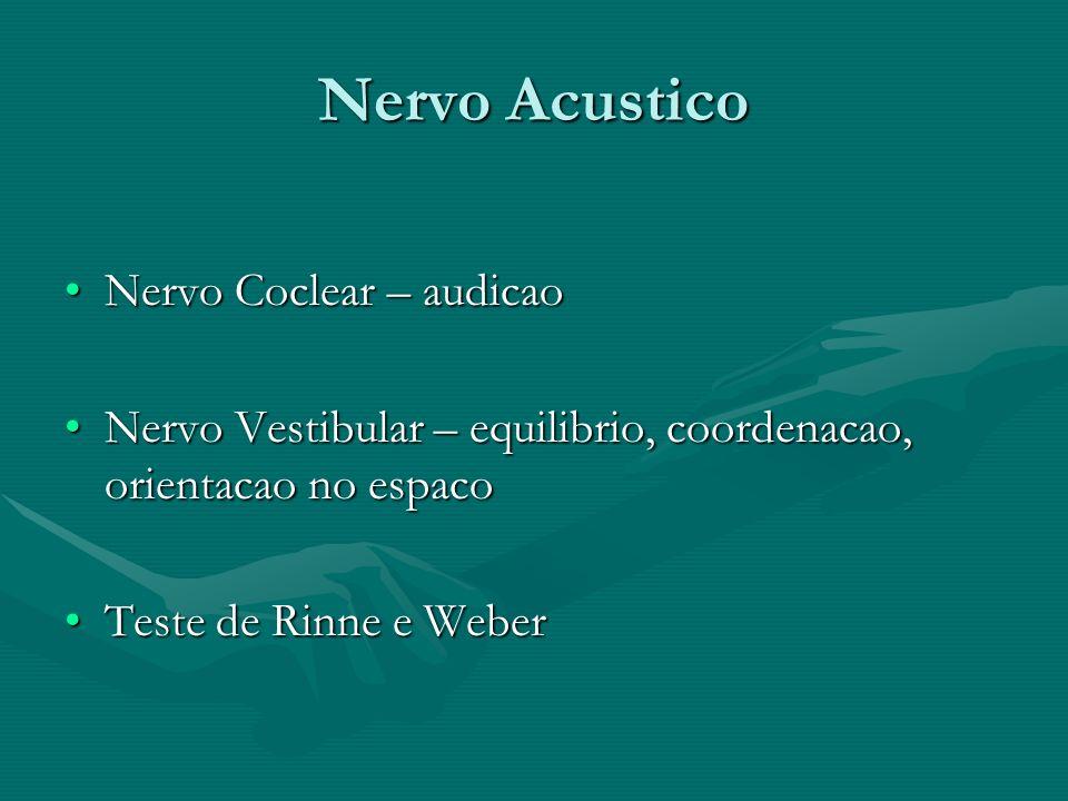 Nervo Acustico Nervo Coclear – audicaoNervo Coclear – audicao Nervo Vestibular – equilibrio, coordenacao, orientacao no espacoNervo Vestibular – equil