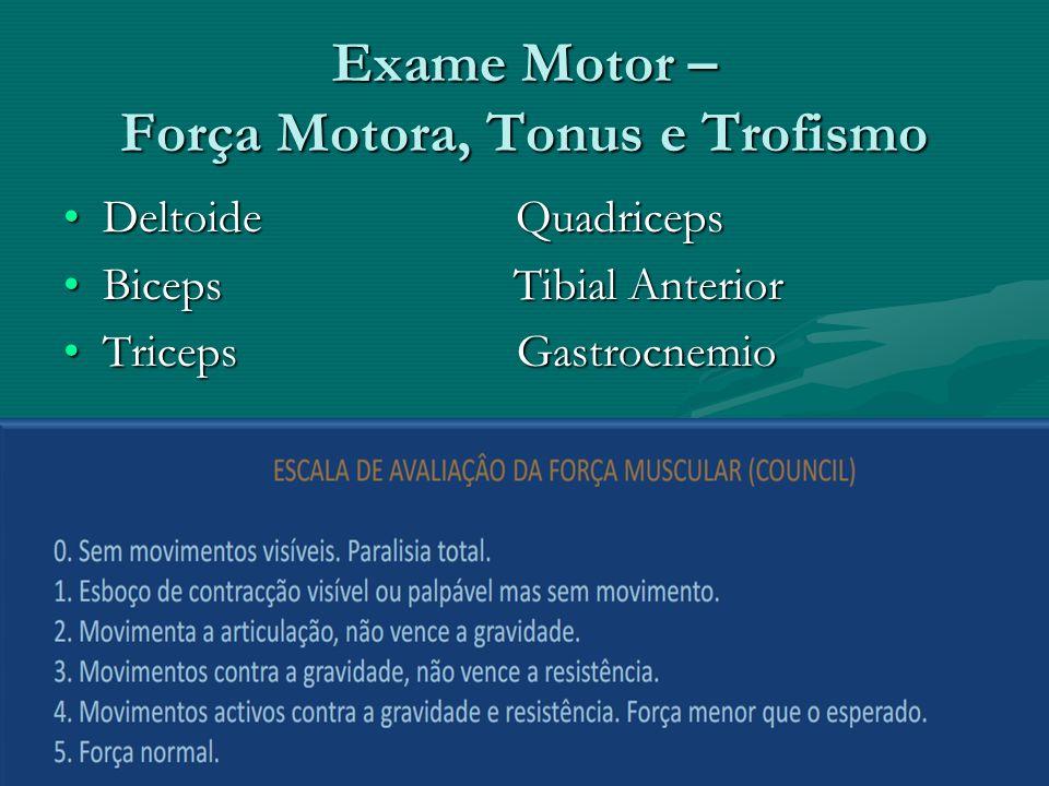 Exame Motor – Força Motora, Tonus e Trofismo Deltoide QuadricepsDeltoide Quadriceps Biceps Tibial AnteriorBiceps Tibial Anterior Triceps GastrocnemioT