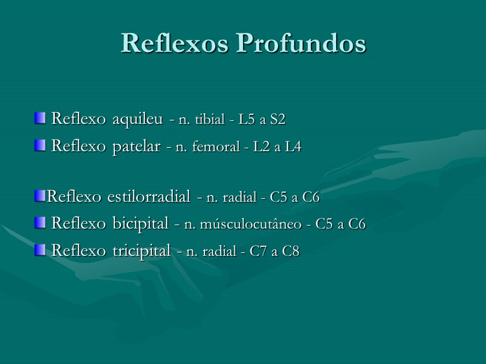 Reflexos Profundos Reflexo aquileu - n. tibial - L5 a S2 Reflexo aquileu - n. tibial - L5 a S2 Reflexo patelar - n. femoral - L2 a L4 Reflexo patelar