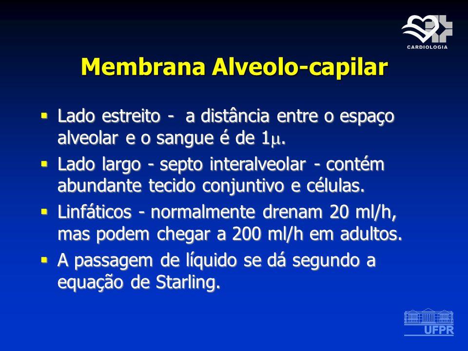 Membrana Alveolo-capilar Lado estreito - a distância entre o espaço alveolar e o sangue é de 1. Lado estreito - a distância entre o espaço alveolar e