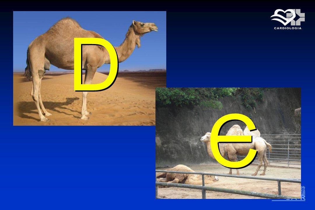 D D C C