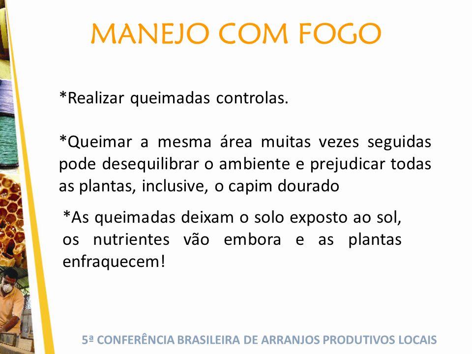 5ª CONFERÊNCIA BRASILEIRA DE ARRANJOS PRODUTIVOS LOCAIS MANEJO COM FOGO *Realizar queimadas controlas.