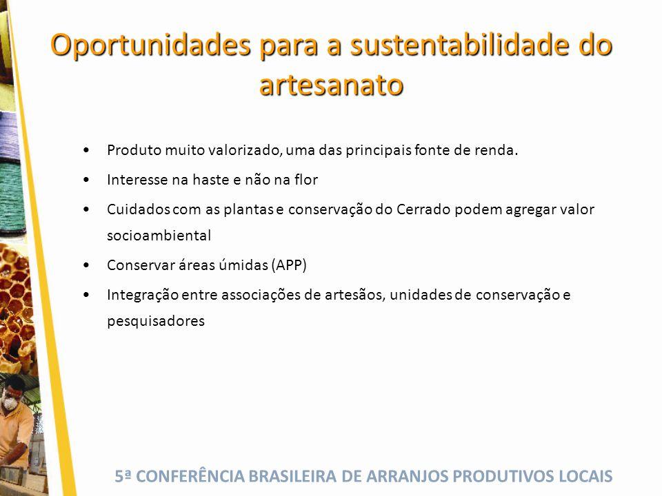 5ª CONFERÊNCIA BRASILEIRA DE ARRANJOS PRODUTIVOS LOCAIS Oportunidades para a sustentabilidade do artesanato Produto muito valorizado, uma das principais fonte de renda.