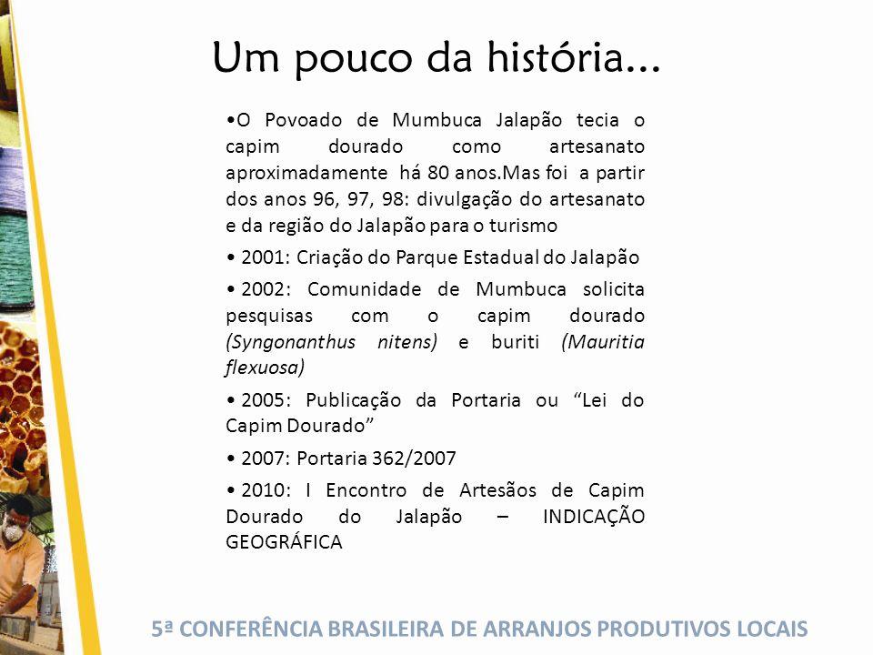 5ª CONFERÊNCIA BRASILEIRA DE ARRANJOS PRODUTIVOS LOCAIS Um pouco da história...