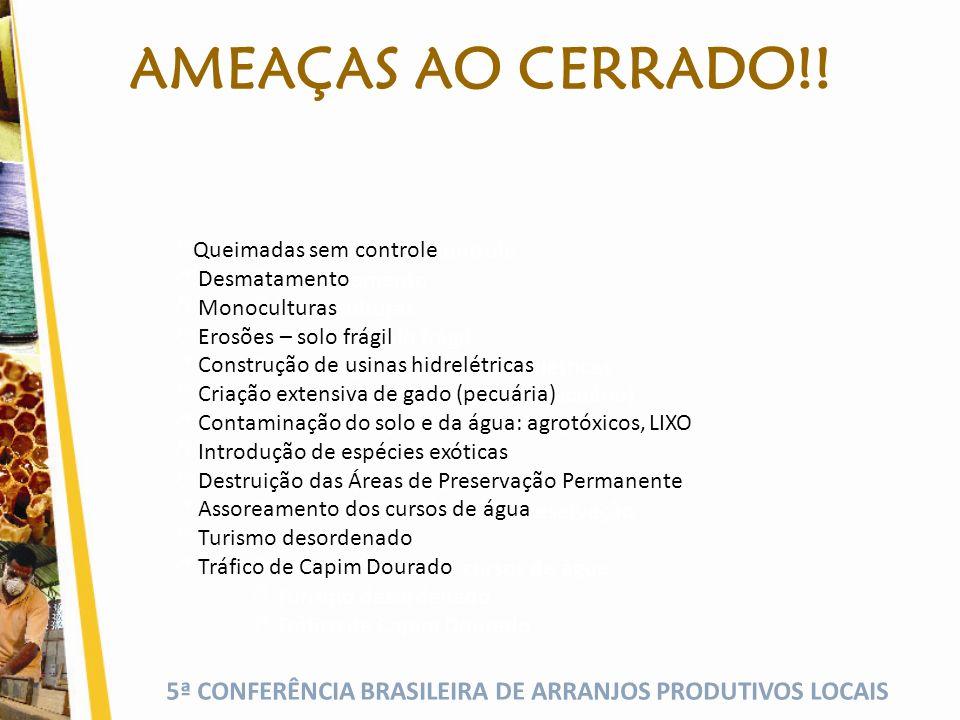5ª CONFERÊNCIA BRASILEIRA DE ARRANJOS PRODUTIVOS LOCAIS A TODAS AS INSTITUIÇÕES QUE ESTÃO DE MÃOS DADAS PELO JALAPÃO Ana Claudia Matos Fone: (63) 9963-5400 E-mail: anaclaudiamumbuca@hotmail.com