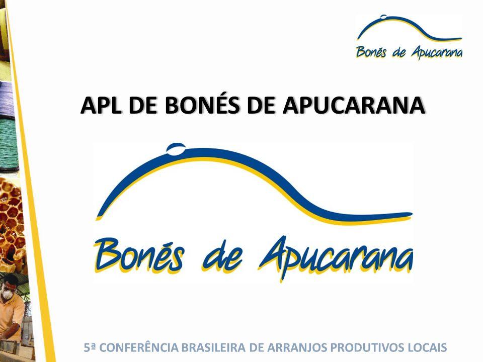 5ª CONFERÊNCIA BRASILEIRA DE ARRANJOS PRODUTIVOS LOCAIS APL DE BONÉS DE APUCARANAAPL DE BONÉS DE APUCARANA