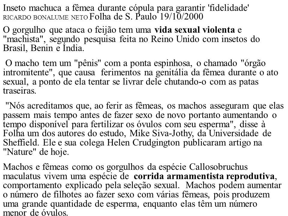 Inseto machuca a fêmea durante cópula para garantir 'fidelidade' RICARDO BONALUME NETO Folha de S. Paulo 19/10/2000 O gorgulho que ataca o feijão tem
