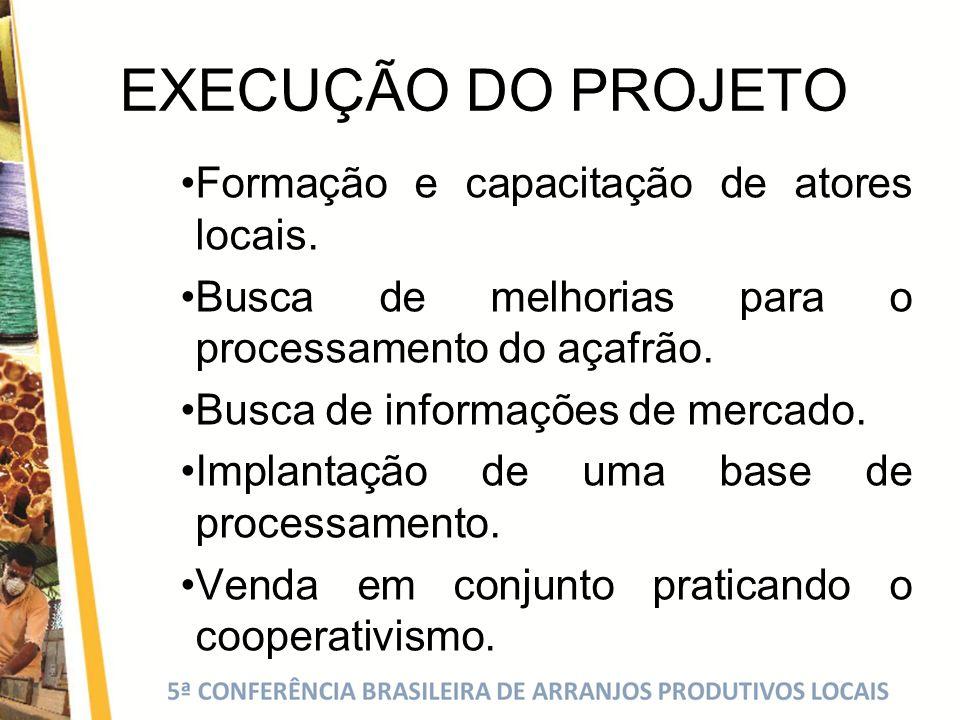 EXECUÇÃO DO PROJETO Formação e capacitação de atores locais. Busca de melhorias para o processamento do açafrão. Busca de informações de mercado. Impl