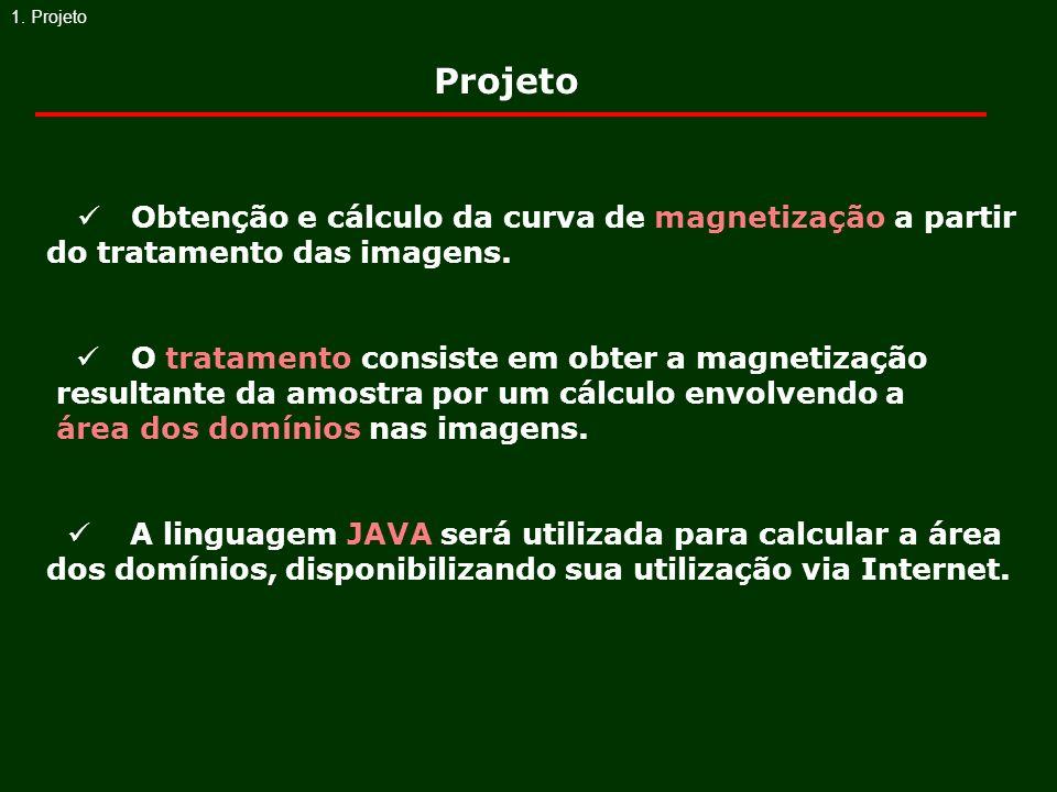 1. Projeto Obtenção e cálculo da curva de magnetização a partir do tratamento das imagens. O tratamento consiste em obter a magnetização resultante da