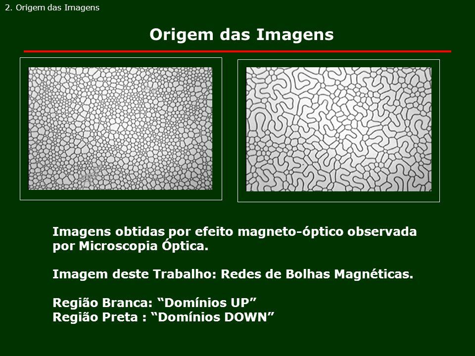 Origem das Imagens 2. Origem das Imagens Imagens obtidas por efeito magneto-óptico observada por Microscopia Óptica. Imagem deste Trabalho: Redes de B
