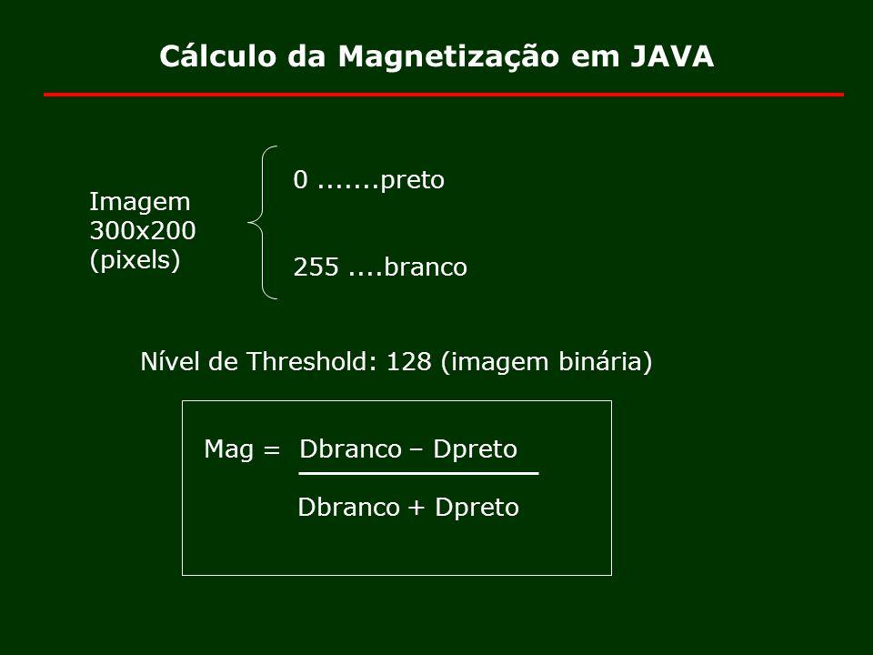 Cálculo da Magnetização em JAVA Imagem 300x200 (pixels) 0.......preto 255....branco Nível de Threshold: 128 (imagem binária) Mag = Dbranco – Dpreto Db