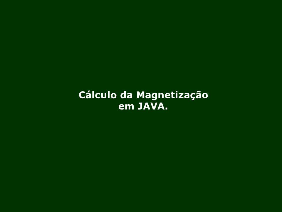 Cálculo da Magnetização em JAVA.