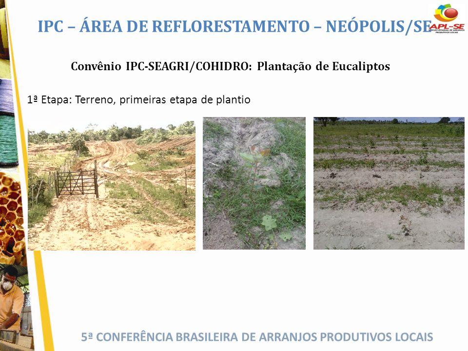 5ª CONFERÊNCIA BRASILEIRA DE ARRANJOS PRODUTIVOS LOCAIS IPC – ÁREA DE REFLORESTAMENTO – NEÓPOLIS/SE Convênio IPC-SEAGRI/COHIDRO: Plantação de Eucalipt