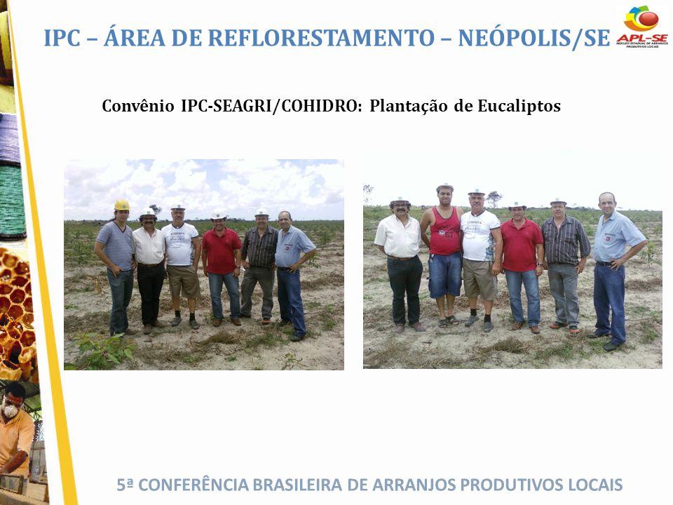 5ª CONFERÊNCIA BRASILEIRA DE ARRANJOS PRODUTIVOS LOCAIS Convênio IPC-SEAGRI/COHIDRO: Plantação de Eucaliptos IPC – ÁREA DE REFLORESTAMENTO – NEÓPOLIS/