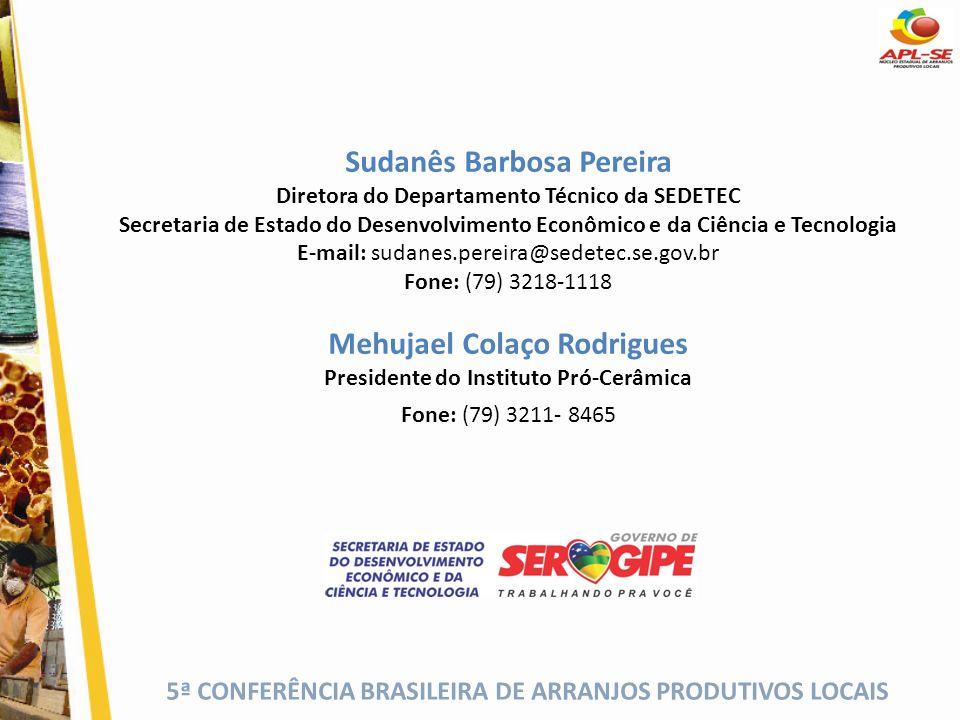 5ª CONFERÊNCIA BRASILEIRA DE ARRANJOS PRODUTIVOS LOCAIS Sudanês Barbosa Pereira Diretora do Departamento Técnico da SEDETEC Secretaria de Estado do De