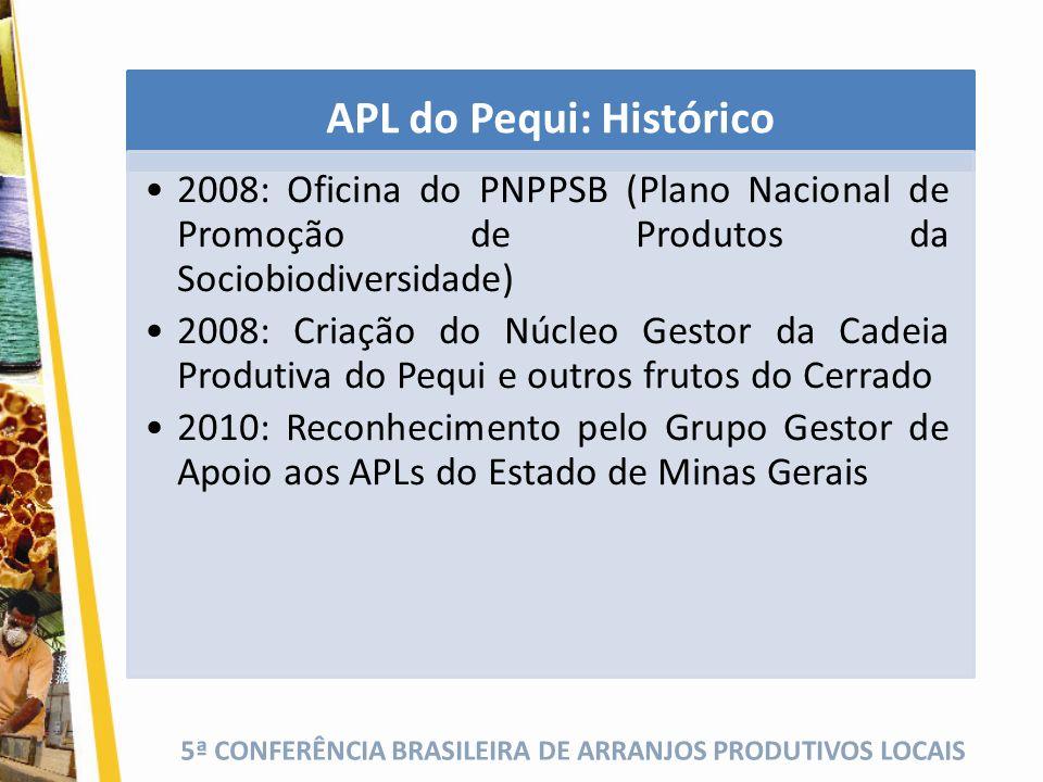 APL do Pequi: Histórico 2008: Oficina do PNPPSB (Plano Nacional de Promoção de Produtos da Sociobiodiversidade) 2008: Criação do Núcleo Gestor da Cade