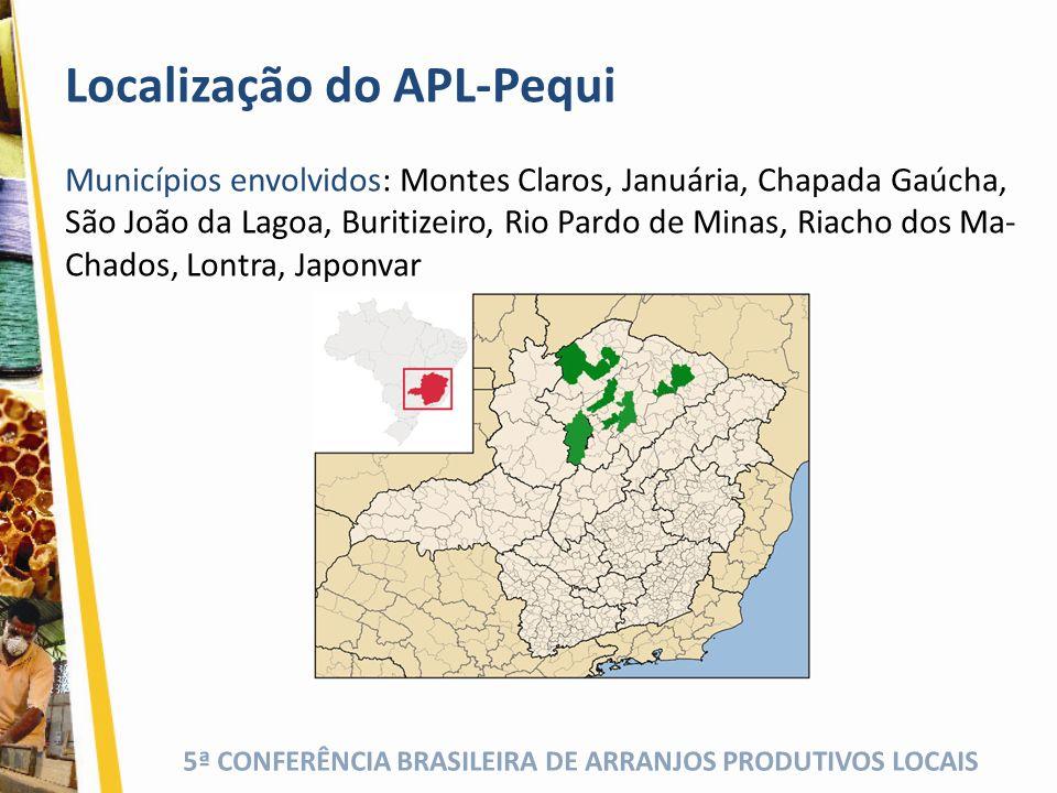 Localização do APL-Pequi Municípios envolvidos: Montes Claros, Januária, Chapada Gaúcha, São João da Lagoa, Buritizeiro, Rio Pardo de Minas, Riacho do