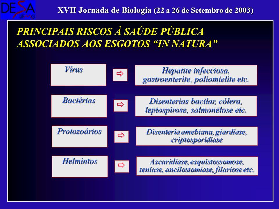 Hepatite infecciosa, gastroenterite, poliomielite etc. Vírus Disenterias bacilar, cólera, leptospirose, salmonelose etc. Bactérias Disenteria amebiana