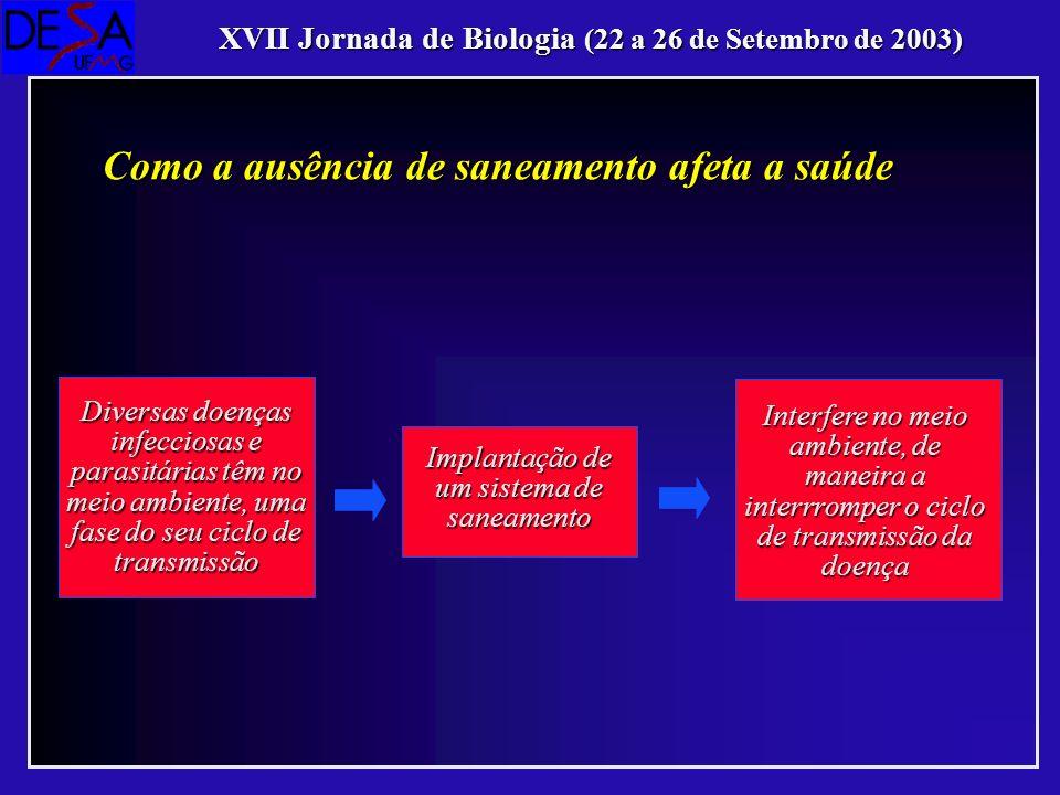 XVII Jornada de Biologia (22 a 26 de Setembro de 2003) Como a ausência de saneamento afeta a saúde Diversas doenças infecciosas e parasitárias têm no